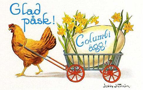Columbi ägg