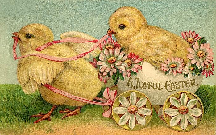 Påskkort med kycklingar